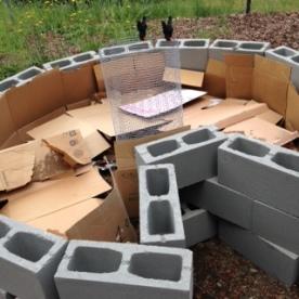 Keyhole Garden 2